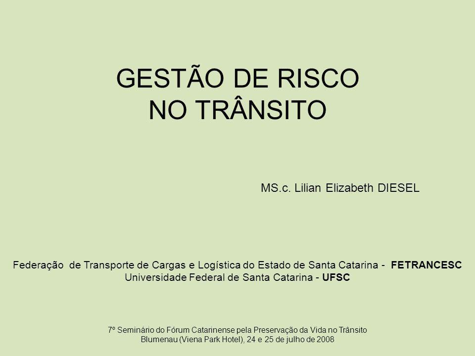 GESTÃO DE RISCO NO TRÂNSITO MS.c. Lilian Elizabeth DIESEL