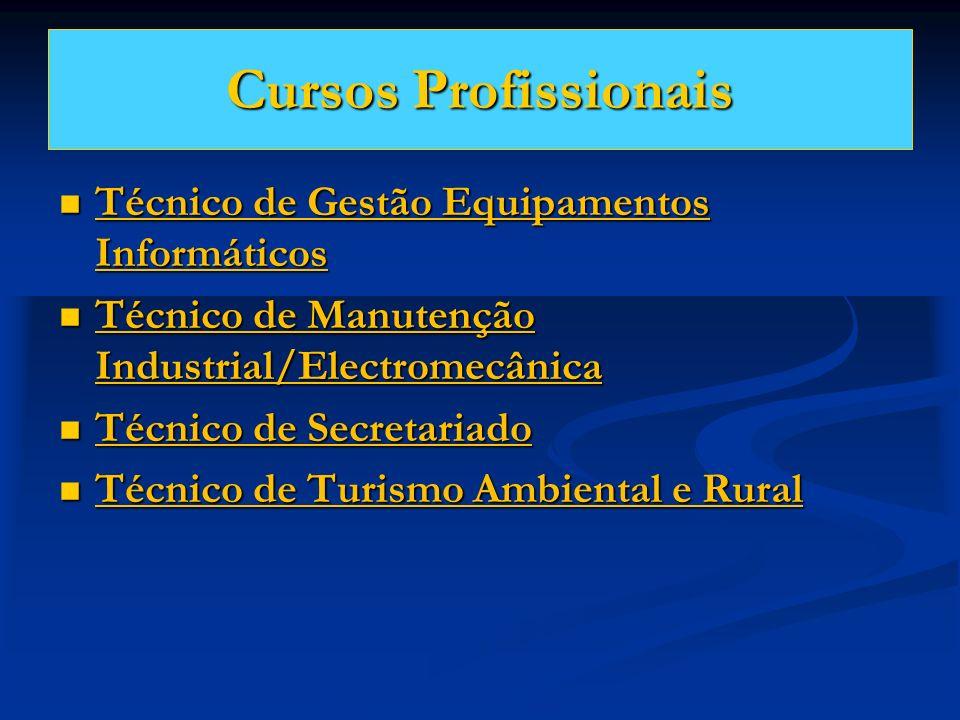Cursos Profissionais Técnico de Gestão Equipamentos Informáticos