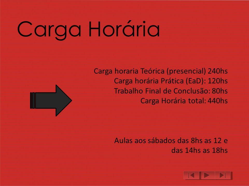 Carga Horária Carga horaria Teórica (presencial) 240hs