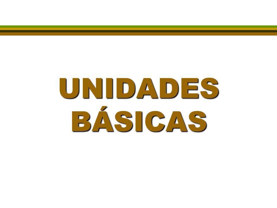 UNIDADES BÁSICAS