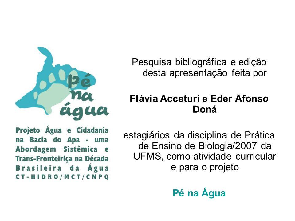 Flávia Acceturi e Eder Afonso Doná