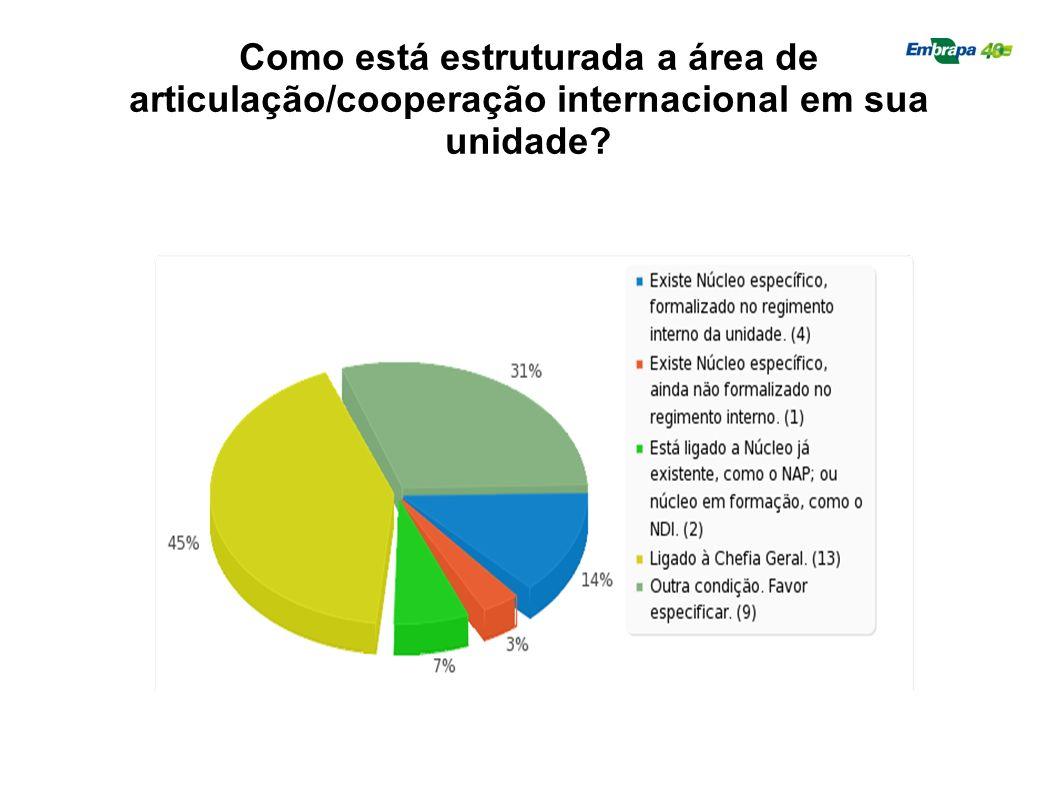 Como está estruturada a área de articulação/cooperação internacional em sua unidade
