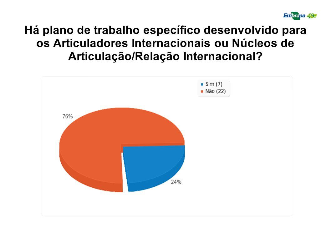 Há plano de trabalho específico desenvolvido para os Articuladores Internacionais ou Núcleos de Articulação/Relação Internacional