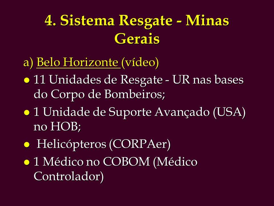 4. Sistema Resgate - Minas Gerais