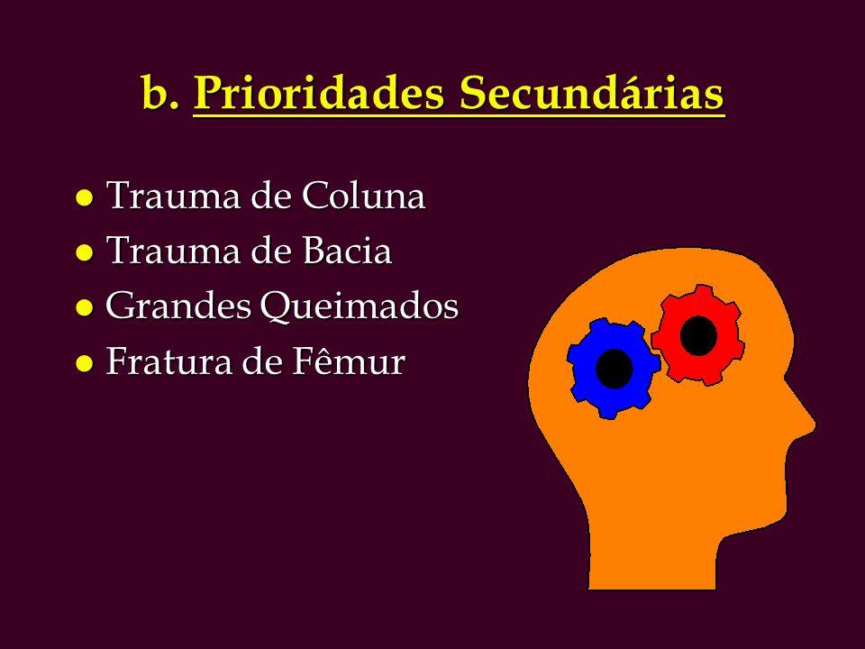 b. Prioridades Secundárias