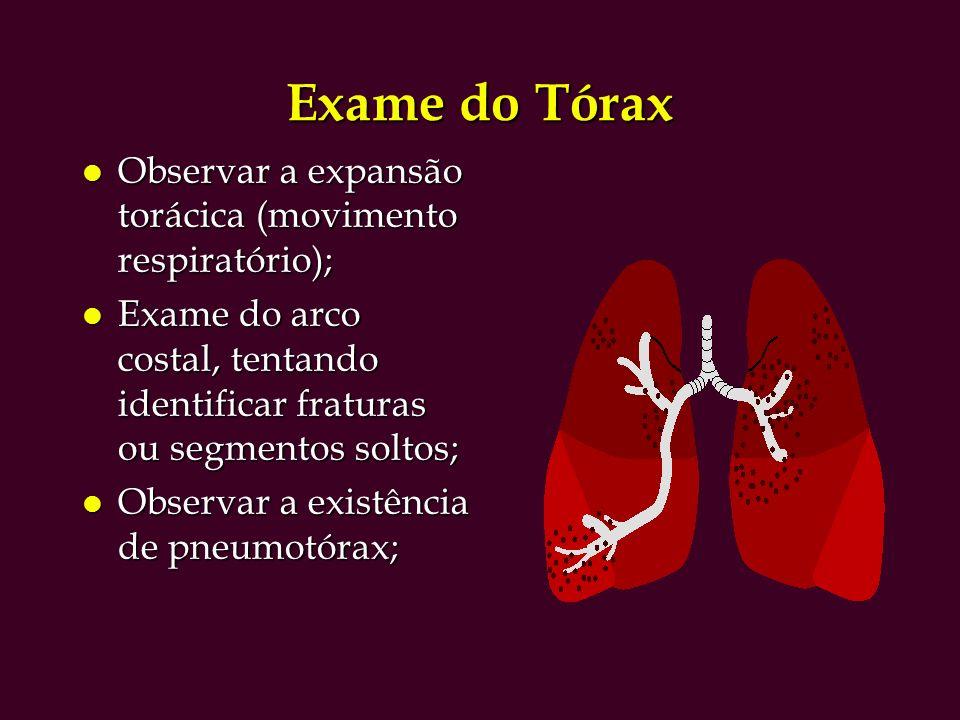 Exame do Tórax Observar a expansão torácica (movimento respiratório);