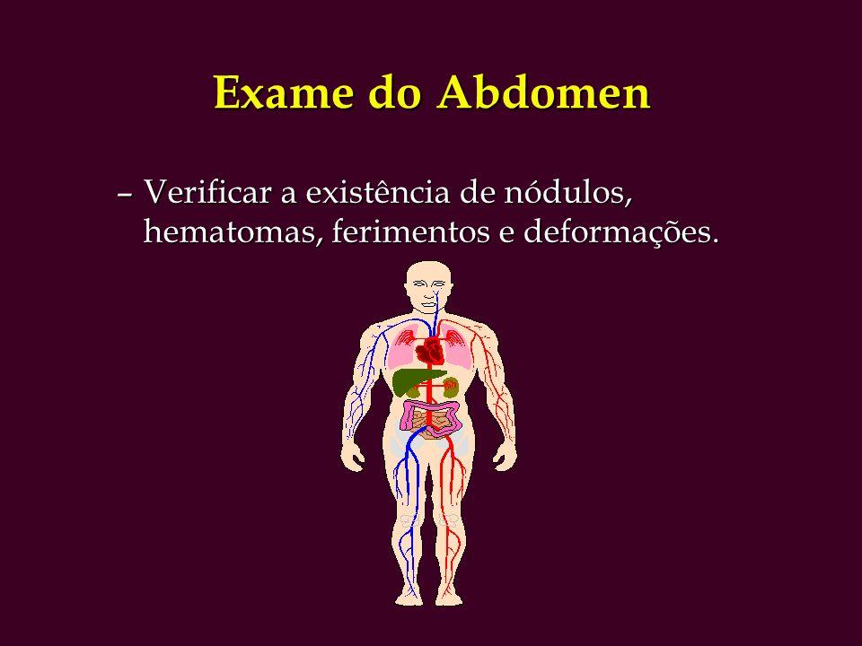 Exame do Abdomen Verificar a existência de nódulos, hematomas, ferimentos e deformações.
