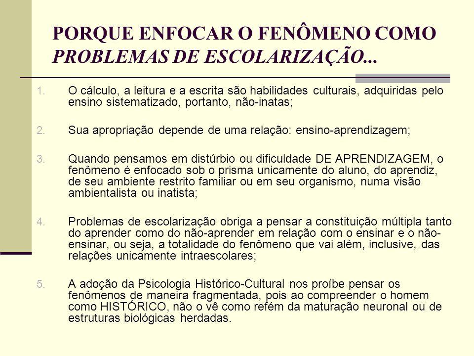 PORQUE ENFOCAR O FENÔMENO COMO PROBLEMAS DE ESCOLARIZAÇÃO...