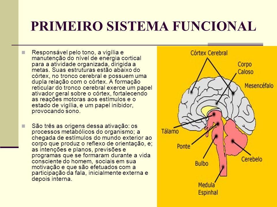 PRIMEIRO SISTEMA FUNCIONAL