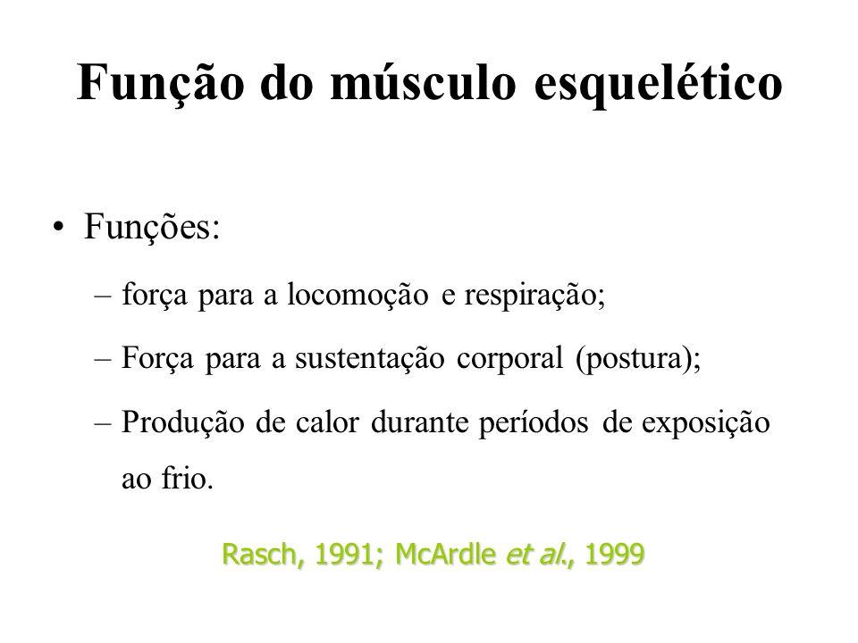 Função do músculo esquelético