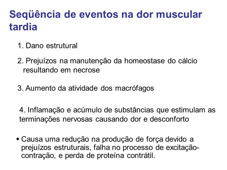 Seqüência de eventos na dor muscular tardia
