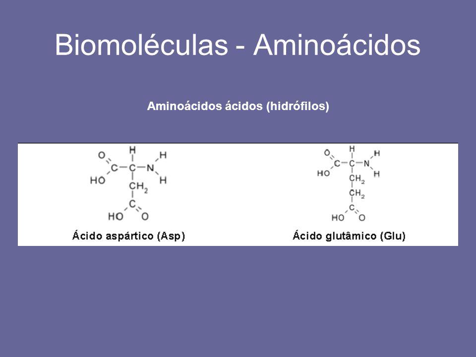 Biomoléculas - Aminoácidos