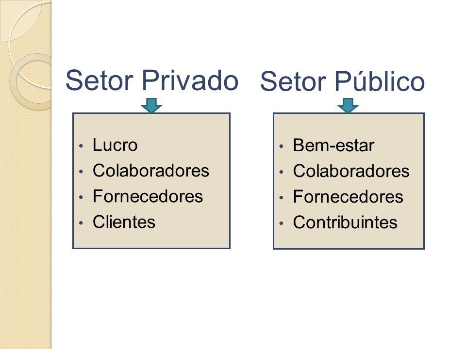 Setor Privado Setor Público Lucro Colaboradores Fornecedores Clientes