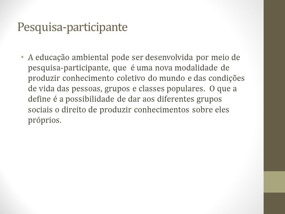 Pesquisa-participante