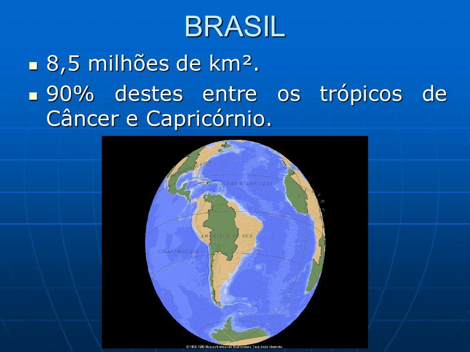 BRASIL 8,5 milhões de km². 90% destes entre os trópicos de Câncer e Capricórnio.
