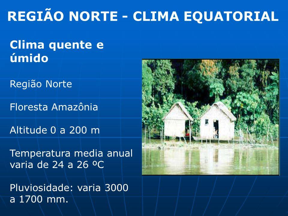 REGIÃO NORTE - CLIMA EQUATORIAL
