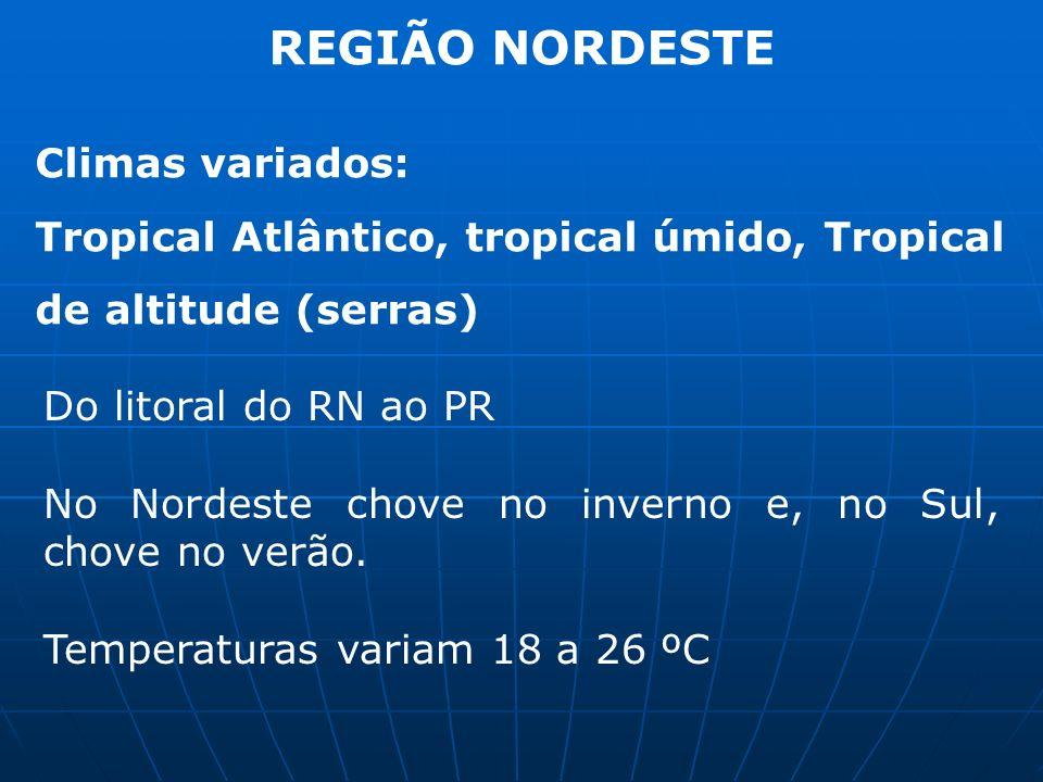 REGIÃO NORDESTE Climas variados: