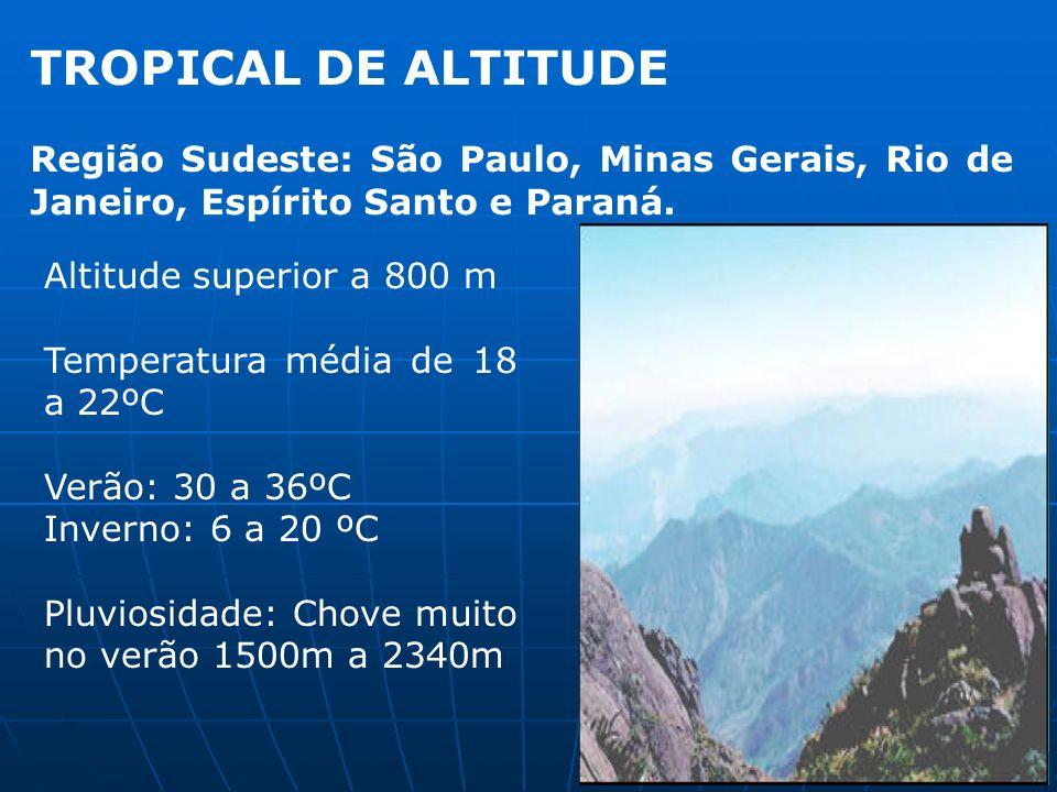 TROPICAL DE ALTITUDE Região Sudeste: São Paulo, Minas Gerais, Rio de Janeiro, Espírito Santo e Paraná.