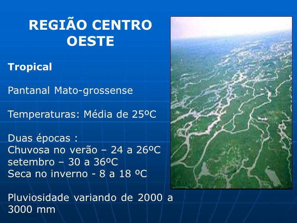 REGIÃO CENTRO OESTE Tropical Pantanal Mato-grossense