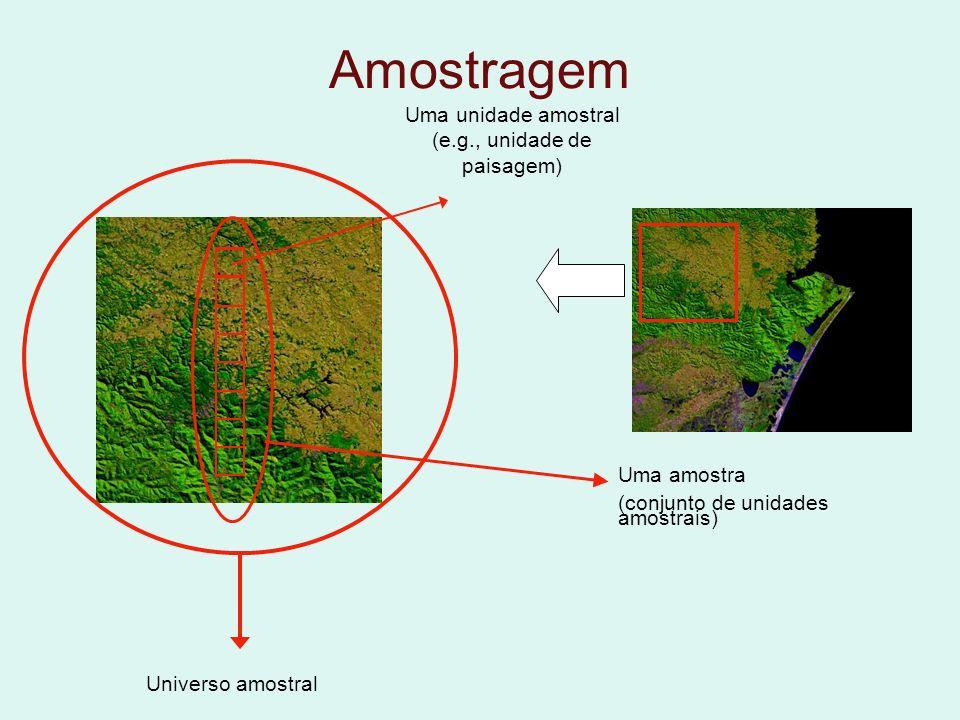 Uma unidade amostral (e.g., unidade de paisagem)