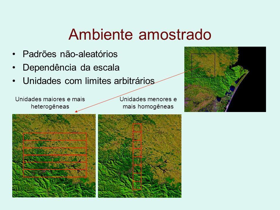 Ambiente amostrado Padrões não-aleatórios Dependência da escala