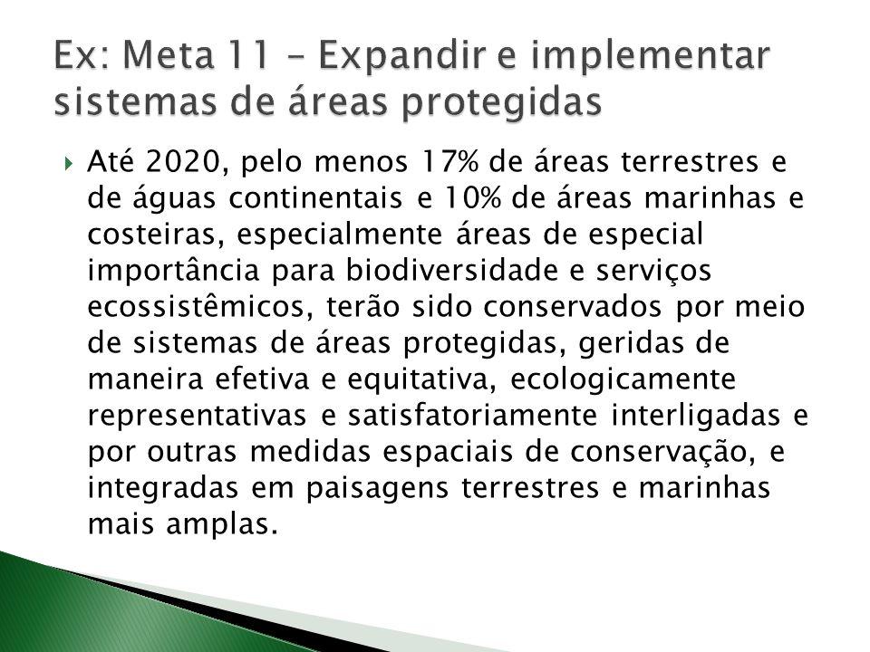Ex: Meta 11 – Expandir e implementar sistemas de áreas protegidas