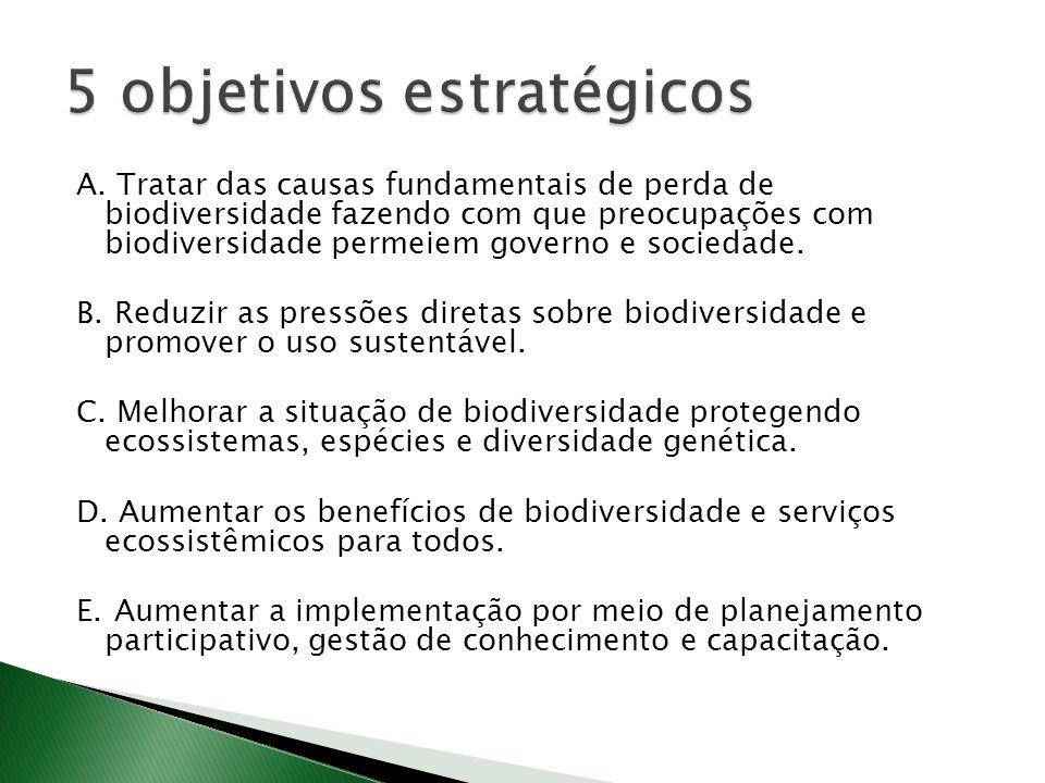 5 objetivos estratégicos