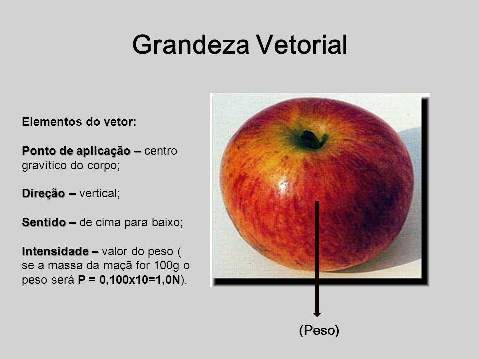 Grandeza Vetorial (Peso) Elementos do vetor:
