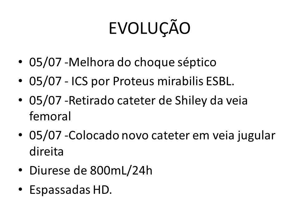 EVOLUÇÃO 05/07 -Melhora do choque séptico