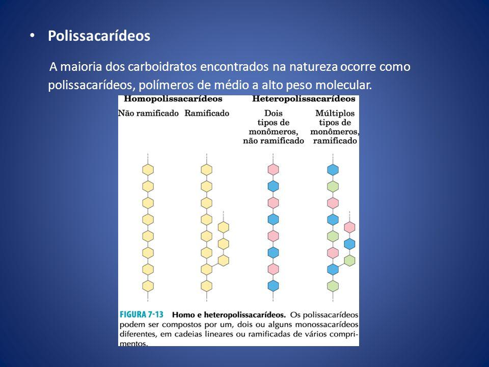 Polissacarídeos A maioria dos carboidratos encontrados na natureza ocorre como polissacarídeos, polímeros de médio a alto peso molecular.