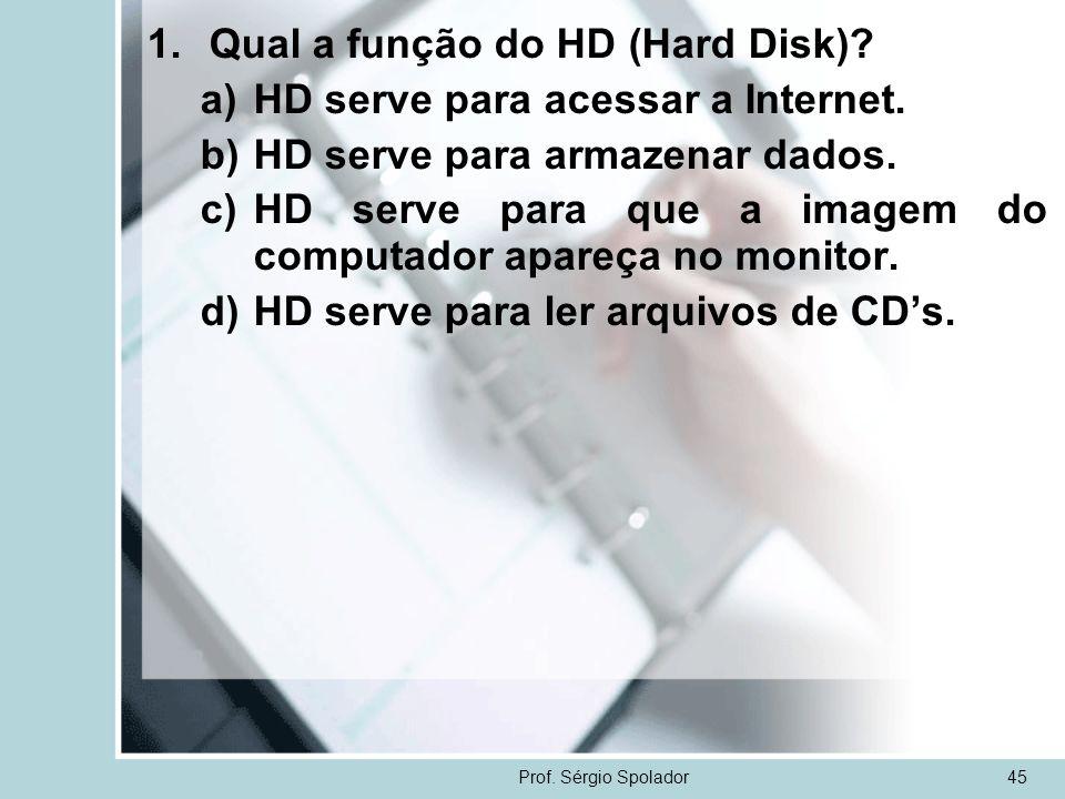 Qual a função do HD (Hard Disk) HD serve para acessar a Internet.