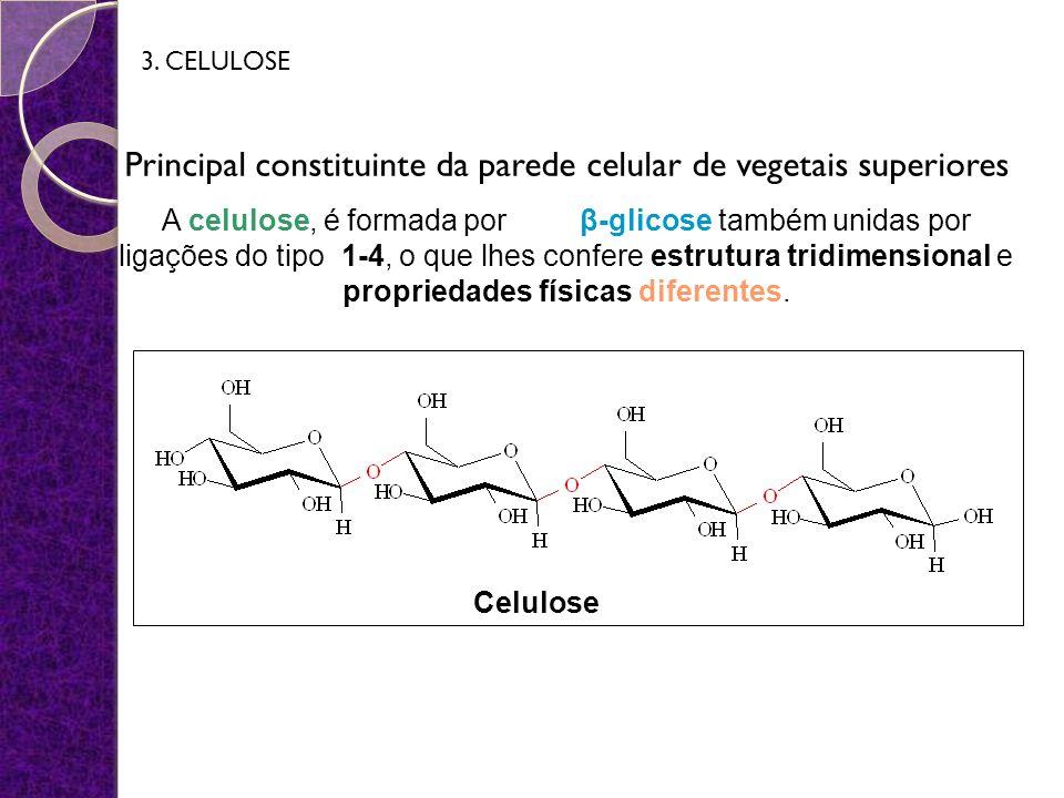 Principal constituinte da parede celular de vegetais superiores