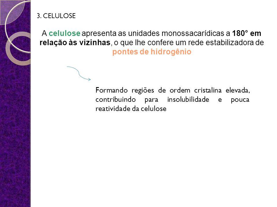 3. CELULOSE