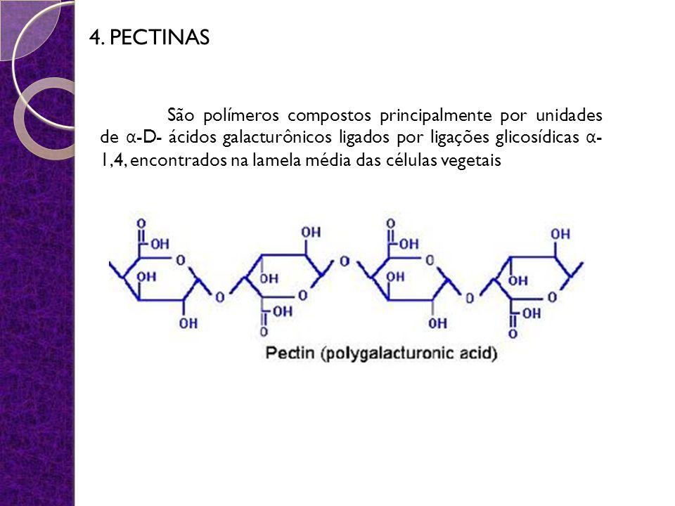 4. PECTINAS