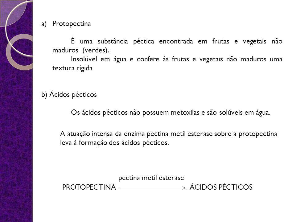Protopectina É uma substância péctica encontrada em frutas e vegetais não maduros (verdes).