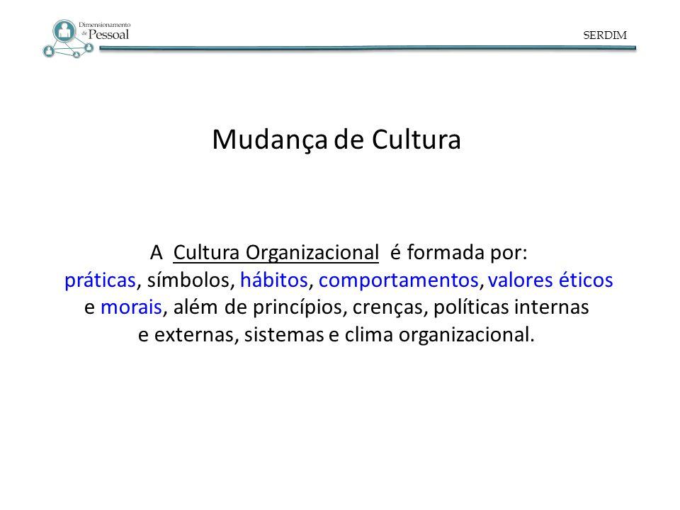 A Cultura Organizacional é formada por: