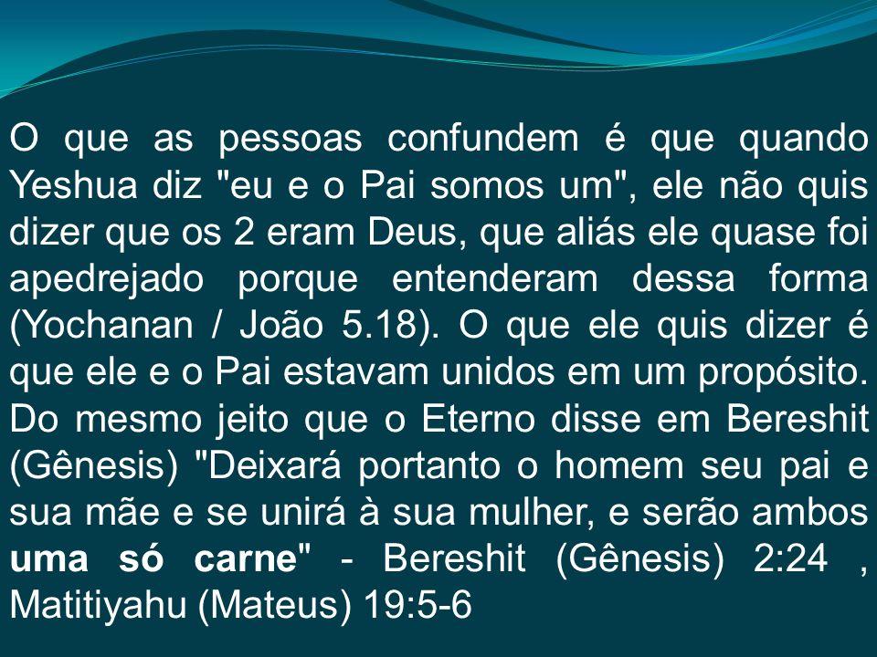 O que as pessoas confundem é que quando Yeshua diz eu e o Pai somos um , ele não quis dizer que os 2 eram Deus, que aliás ele quase foi apedrejado porque entenderam dessa forma (Yochanan / João 5.18).