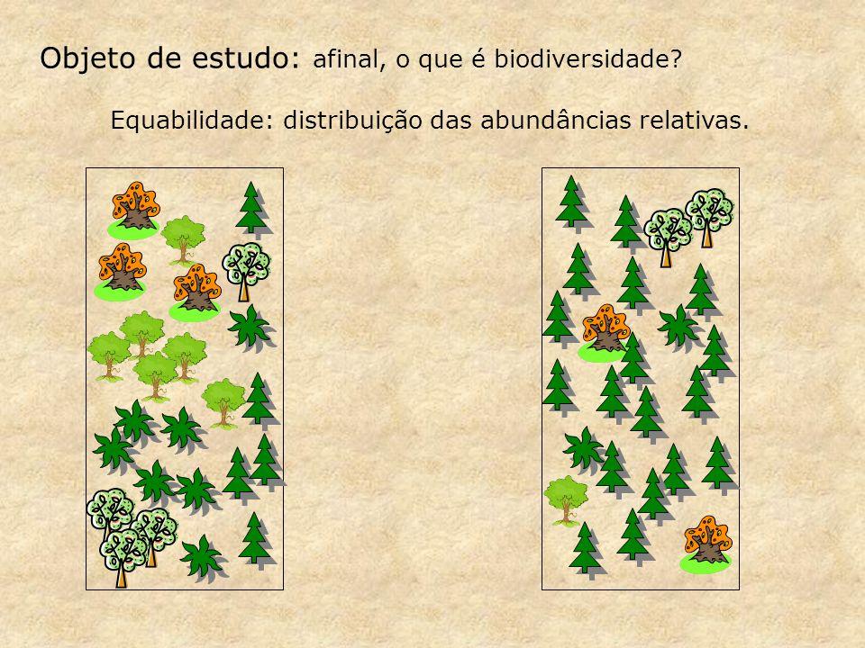 Objeto de estudo: afinal, o que é biodiversidade