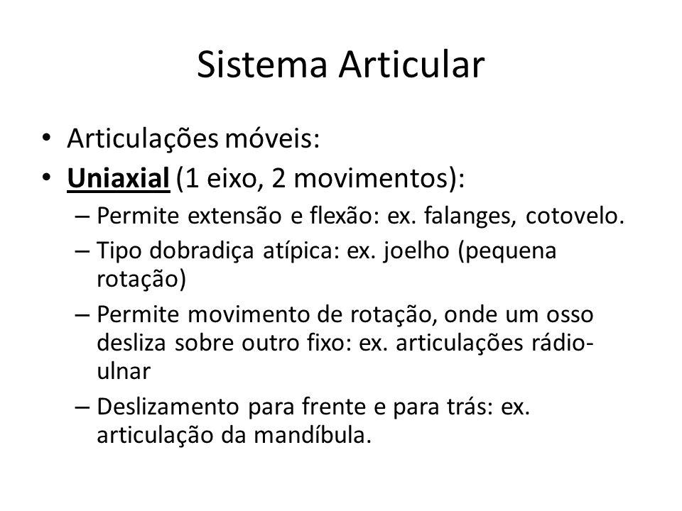 Sistema Articular Articulações móveis: