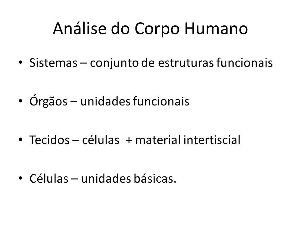 Análise do Corpo Humano