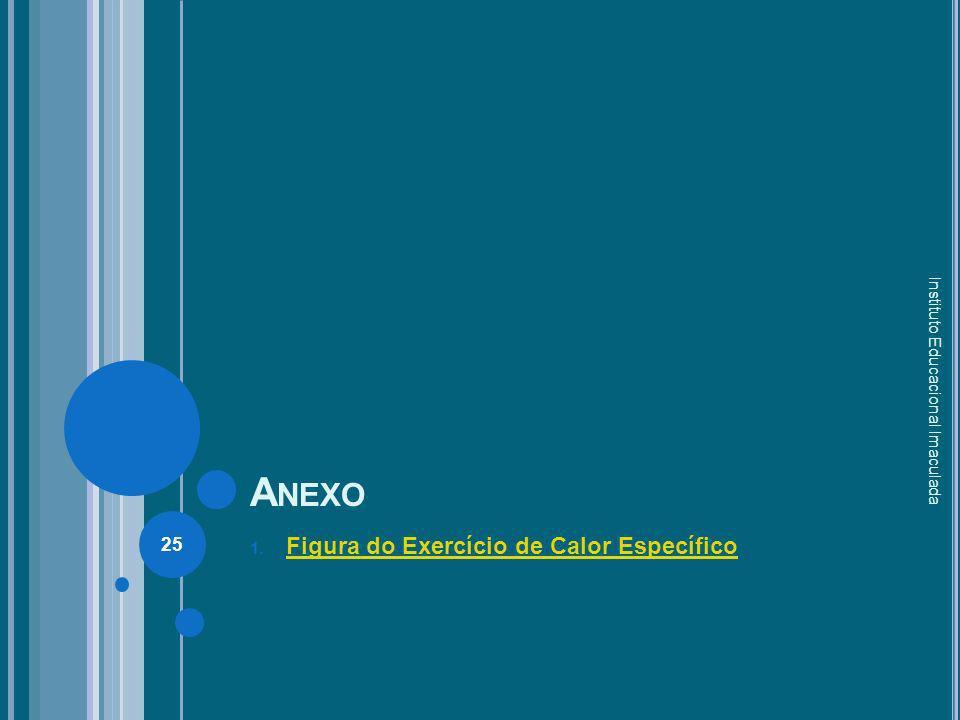 Anexo Figura do Exercício de Calor Específico