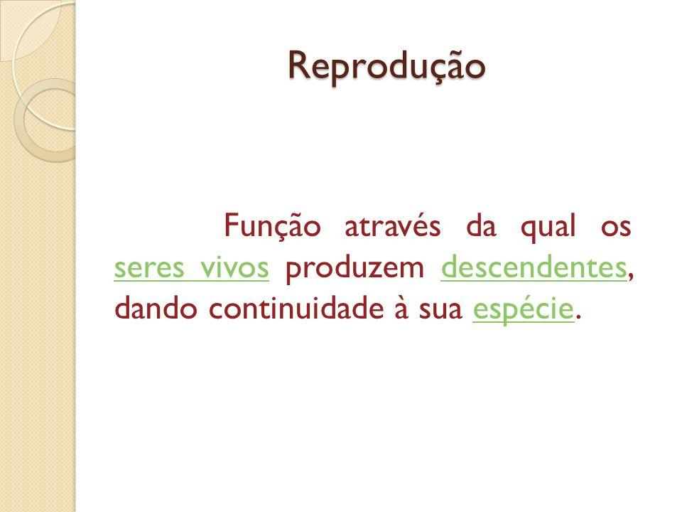 Reprodução Função através da qual os seres vivos produzem descendentes, dando continuidade à sua espécie.
