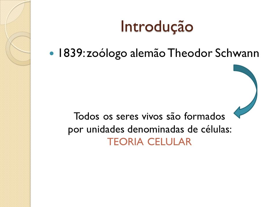 Introdução 1839: zoólogo alemão Theodor Schwann