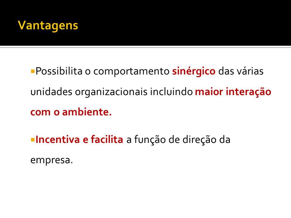 Vantagens Possibilita o comportamento sinérgico das várias unidades organizacionais incluindo maior interação com o ambiente.