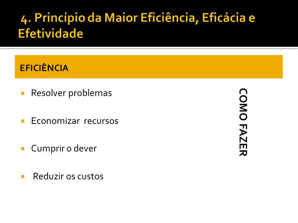 4. Princípio da Maior Eficiência, Eficácia e Efetividade
