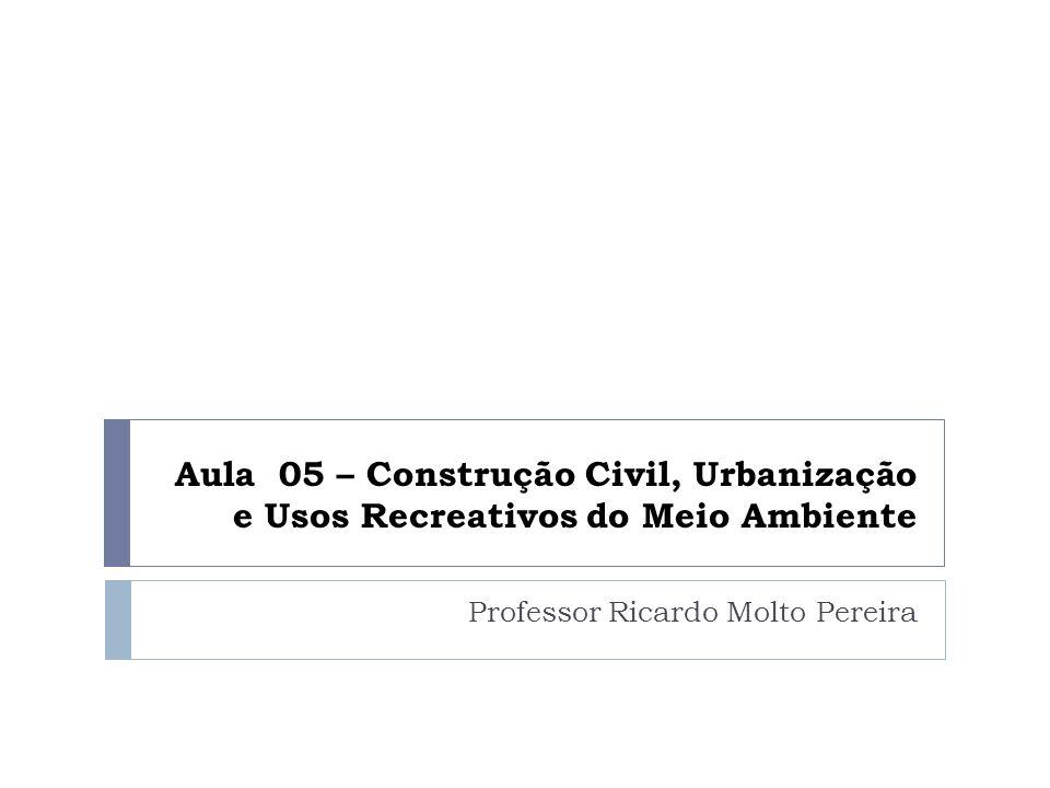 Professor Ricardo Molto Pereira