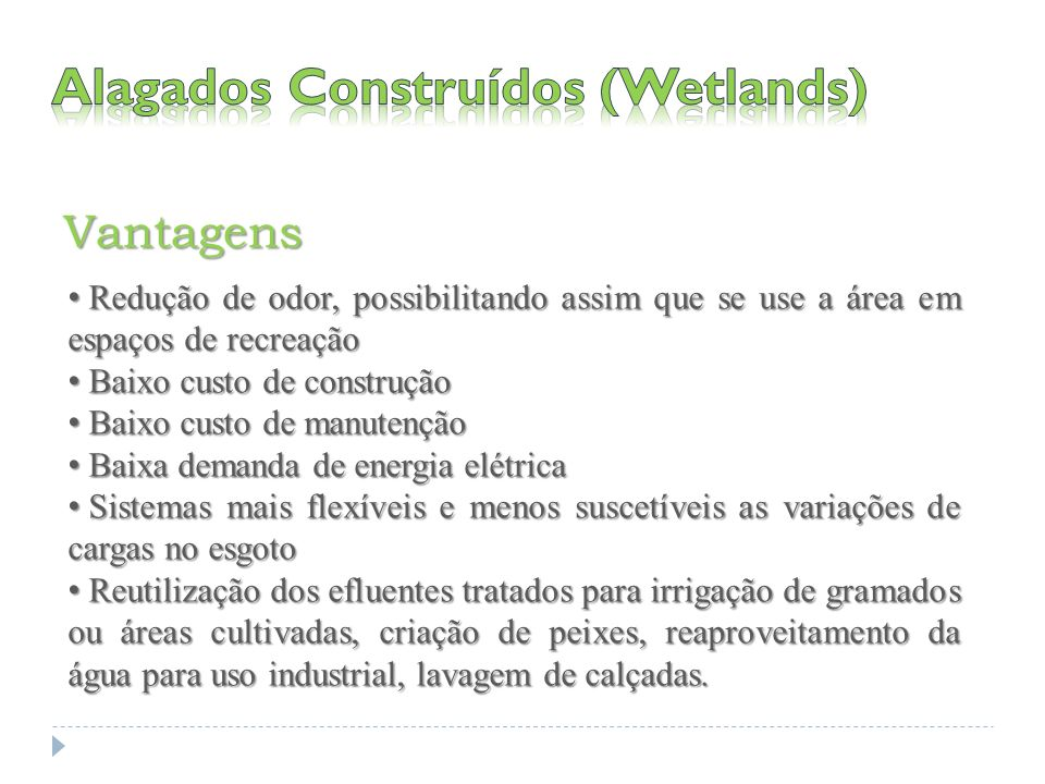 Alagados Construídos (Wetlands)