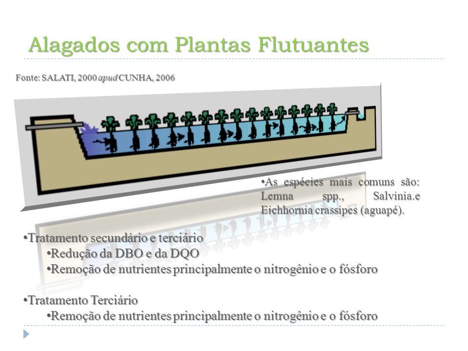 Alagados com Plantas Flutuantes