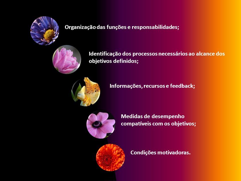 Organização das funções e responsabilidades;