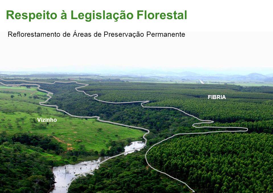 Respeito à Legislação Florestal